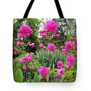 German Catchfly Pink Tote Bag