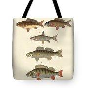 German Sea Fish Tote Bag
