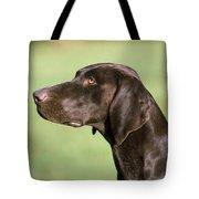 German Short-haired Pointer Dog Tote Bag