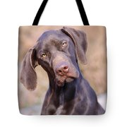 German Short-haired Pointer Puppy Tote Bag