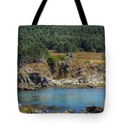 Gerstle Beach Tote Bag