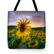 Get Sun Tote Bag