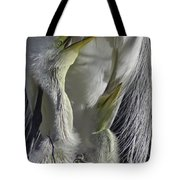 Getting Attention Tote Bag