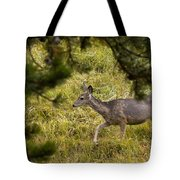 Getting Out Of Sight Tote Bag