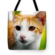 Getting Ready For The Hunt Tote Bag