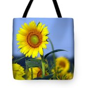 Getting To The Sun Tote Bag