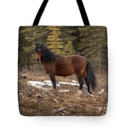 Ghost Forest Stallion Tote Bag