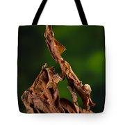 Ghost Or Dead Leaf Mantis Tote Bag