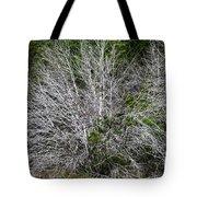 Ghost Trees Tote Bag