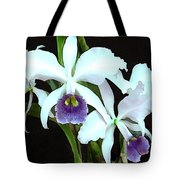 Ghostly Cattleyas Tote Bag