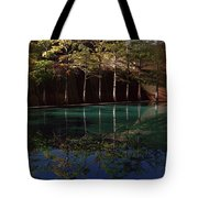 Ghostly Quiet Tote Bag