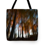 Ghosts Of The Forest Tote Bag
