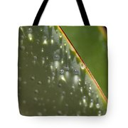 Giant Agave Abstract 4 Tote Bag