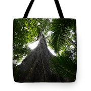 Giant Cashew Tree Amazon Rainforest Brazil Tote Bag