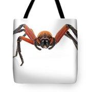 Giant Crab Spider Suriname Tote Bag