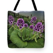 Giant Daisy In Full Bloom Campbell Tote Bag