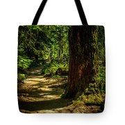 Giant Douglas Fir Trees Collection 2 Tote Bag