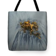 Giant Kelp On The Beach Tote Bag