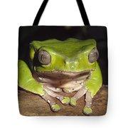 Giant Monkey Frog  Venezuela Tote Bag
