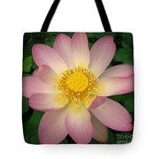 Giant Pink Lotus Tote Bag