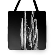 Giant Saguaro Cactus Portrait In Black And White Tote Bag