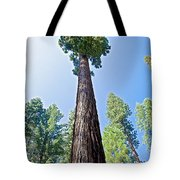 Giant Sequoia In Mariposa Grove In Yosemite National Park-california  Tote Bag