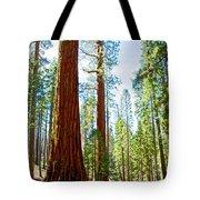 Giant Sequoias In Mariposa Grove In Yosemite National Park-california Tote Bag