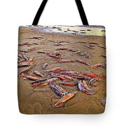 Giant Squid Capitola Beach Tote Bag