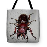 Giant Stag Beetle Tote Bag