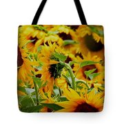 Giant Sunflowers Tote Bag