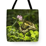 Giant Swallowtail On Clover 3 Tote Bag