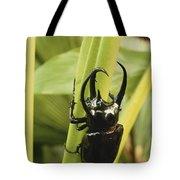 Giant Three-horned Beetle Tote Bag