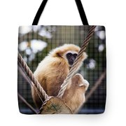 Gibbon On A Swing Tote Bag