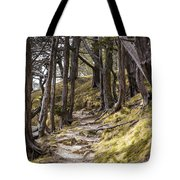 Gibraltar Rock Trail Wisconsin Tote Bag
