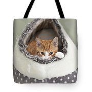 Ginger Kitten In An Igloo Tote Bag