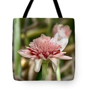 Ginger Plant Flower Tote Bag