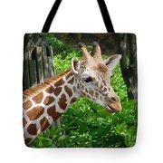 Giraffe-09034 Tote Bag