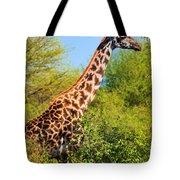 Giraffe Among Trees. Safari In Serengeti. Tanzania Tote Bag