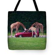 Giraffe. Animal Studies Tote Bag