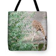Giraffe Drinking Tote Bag