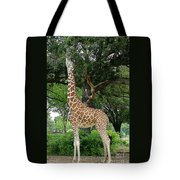 Giraffe Eats-09053 Tote Bag