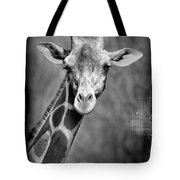 Giraffe Face In Black And White Tote Bag