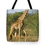 Giraffe From Tanzania Tote Bag