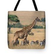 Giraffe Giraffa Camelopardalis Tote Bag