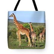 Giraffe Group On The Masai Mara Tote Bag