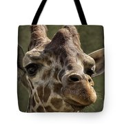 Giraffe Hey Are You Looking At Me Tote Bag