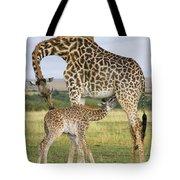 Giraffe Nuzzling Her Nursing Calf Tote Bag