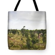 Giraffe Panorama Tote Bag