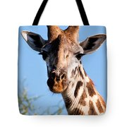 Giraffe Portrait Close-up. Safari In Serengeti. Tote Bag