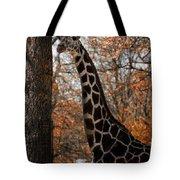 Giraffe Posing Tote Bag